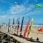 kites.banner