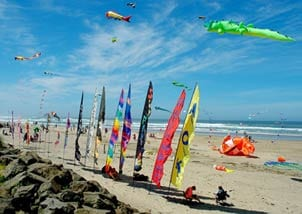 Kite Festival - Rockaway Beach Oregon