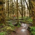 munson-creek02