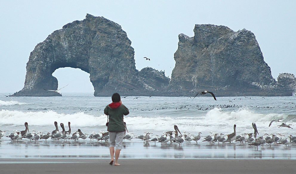 Visitor photographing Twin Rocks, Rockaway Beach, Oregon